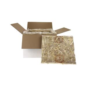 frontal_box-kissen_300x300