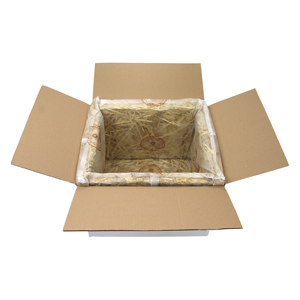 front-oben_box_300x300